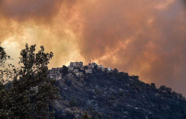 阿尔及利亚山火已致65人死亡 包括25名救援士兵