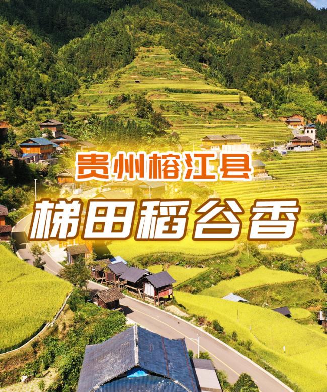 中国农民丰收节 神农氏时空旅行图鉴