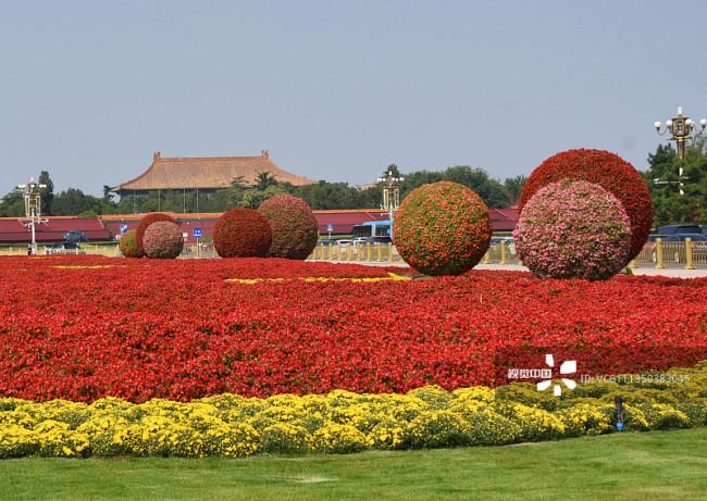北京:天安门广场花团锦簇喜迎国庆编辑图片素材-ID:1350383045