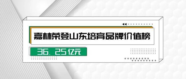 嘉林建设集团品牌价值36.25亿元,入选山东省高端品牌培育企业名单