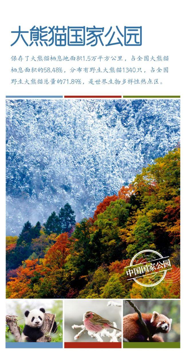 第一批国家公园名单公布,三江源、大熊猫、东北虎豹等五家入选