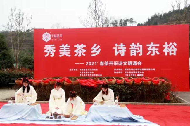 春茶与诗相约,春茶开采诗文朗诵会汉中东裕生态茶园举行