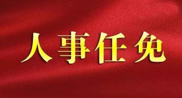 张祥安任安徽省安庆市委书记(图/简历)