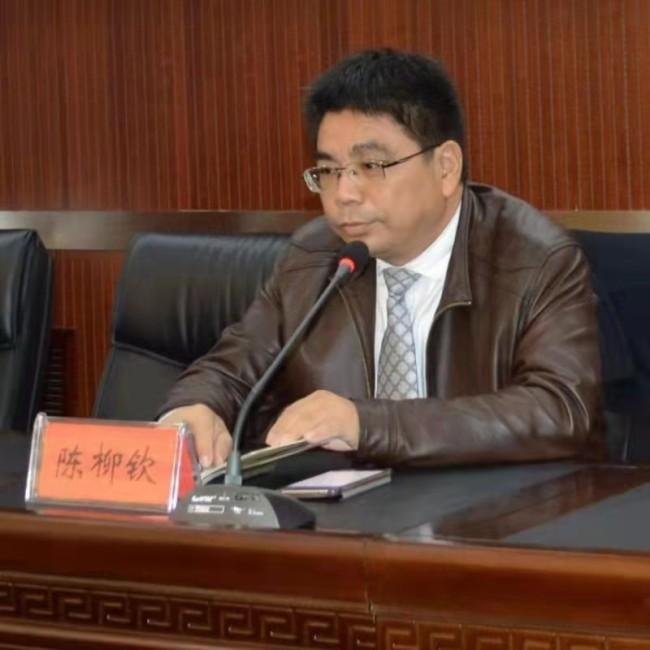陈柳钦:钦点智库创始人兼理事长 、教授
